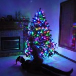 Low light photo of The Wife riding cowgirl style in front of the Christmas tree