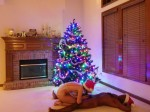 The Wife going down on The Husband under the Christmas tree